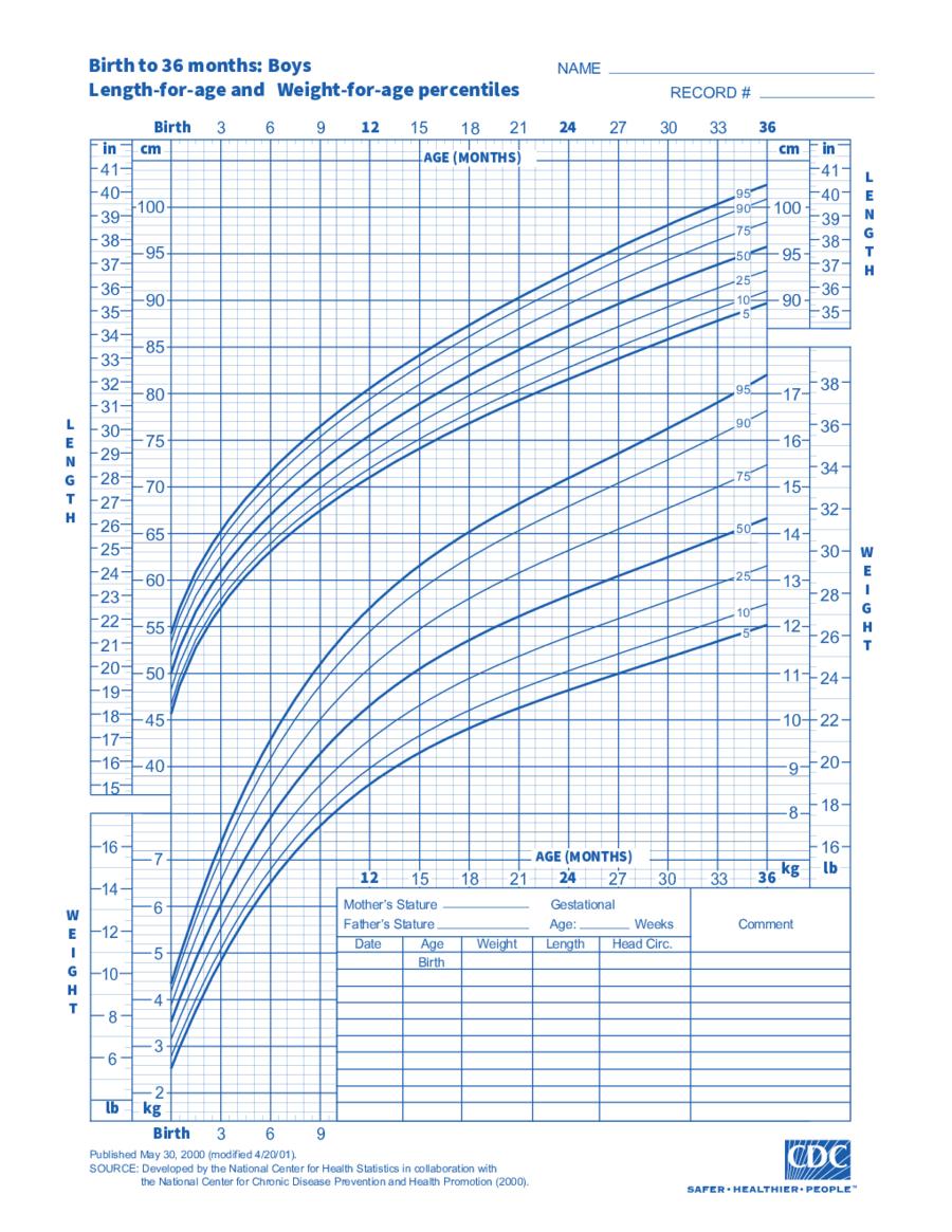 2021 Bmi Chart - Fillable, Printable Pdf & Forms | Handypdf